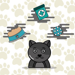 pets gray cat cartoon with food toy and medicine vector illustration