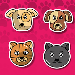 pet cats and dogs set head animal adorable cartoon vector illustration