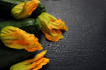 Cucurbita pepo Fiori di zucca Gartenkürbis Dynia zwyczajna Sierpompoen