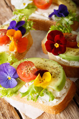 Tasty sandwiches with avocado, tomatoes, edible flowers and cream cheese close-up on the table. vertical