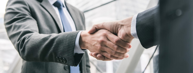 Businessman making handshake with partner