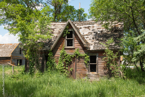 Abandoned farm house overgrown with ivy