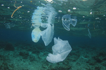 Plastic bags, straws, bottles and cups dumped into ocean, polluting the sea