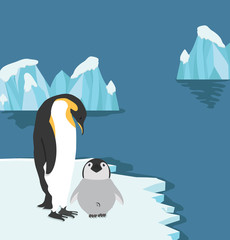 Emperor Penguins with chick on ice floe