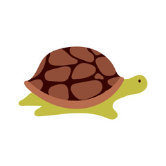 Vector cartoon turtle.