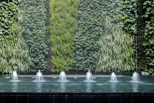 modern water fountain with green living plant wall