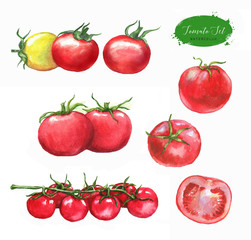 Hand-drawn watercolor food illustration. Set of red tomatoes isolated on the white background. Vegetarian food product