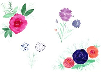 Watercolor flowers. Illustration with flowers of different kinds on white background