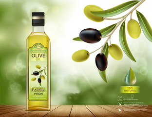 Olives with leaves on a branch