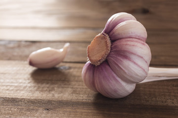 one peeled big head of a young garlic close