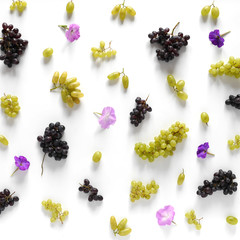 Fototapete - Black and green grapes, lilac flowers on a white background. The pattern of grapes of different varieties, top view. Food background.