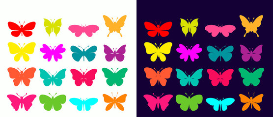Butterflies collection with different colorful elements