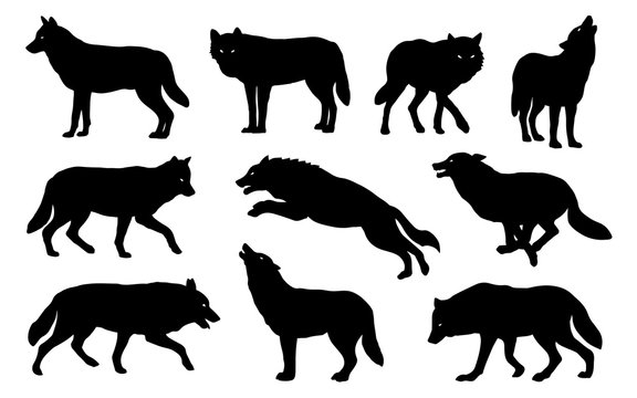 wolf silhouettes 2018