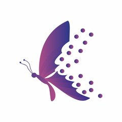 butterfly logo, icon design for illustration