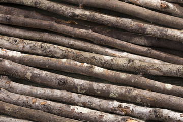 Rustic wood background - texture