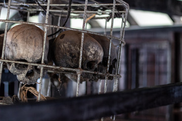 Headhunters Skulls in Cages