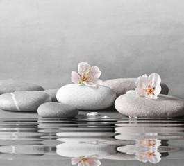 Obraz flower and stone zen spa on grey background - fototapety do salonu
