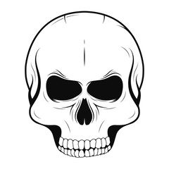 Vector skull in monochrome and vintage tattoo style. Black human skull isolated on white background