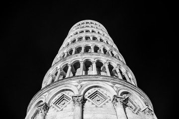 Tower of Pisa (black and white picture)