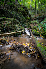 Kleiner Wasserfall im felsigen Wald, Hochformat
