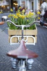 Mit dem Fahrrad Richtung Frühling