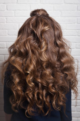 Hairstyle of long curls on the head of a brown-haired woman looking rear view on a white brick wall. Professional female hairdress.