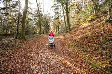 Woman walking with baby carriage through National Forest of Carnoet during Fall season, Finistere, Brittany, France