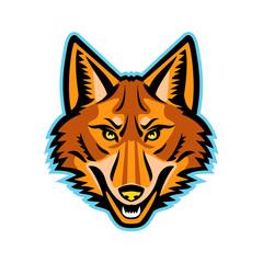 Coyote Head Front Mascot