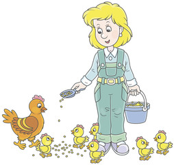 Friendly smiling poultry woman feeding her hen and small chicks on a poultry farm, vector illustration in a cartoon style