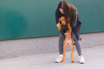 A girl hugs a beautiful brown dog against a background of green wall. The love of the dog and the owner. Pets are a concept