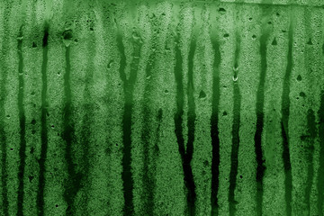 Condensation drops texture in green tone.