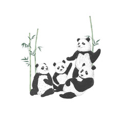 Pandas clip art drawing animal illustration on white background cute animal funny friends