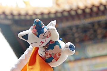 Toys cat China.