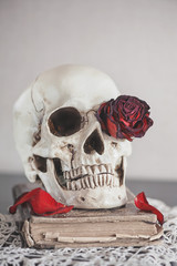 Still life with dry roses and skull on old vintage book