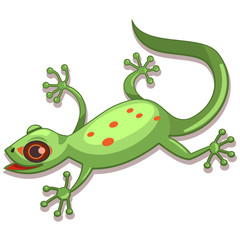 Gecko reptile cartoon vector illustration isolated on white background.