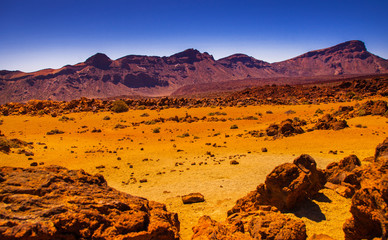 Garden Poster Brown Volcano Teide and lava scenery in Teide National Park, Rocky volcanic landscape of the caldera of Teide national park in Tenerife, Canary Islands, Spain