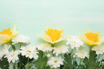 Yellow daffodils with white crisands on a wood background, top view, with empty space for writing or advertising