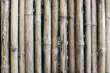 old brown bamboo fence