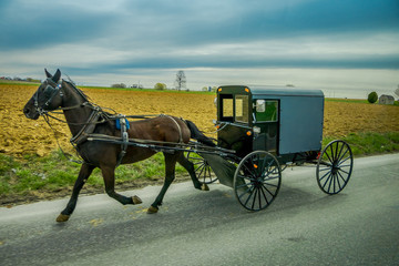 View of Amish buggy on a road with a horse in eastern Pennsylvania