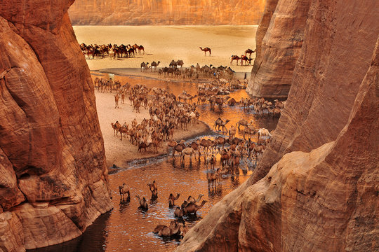 The Guelta d'Archei located in the Ennedi Plateau, in north-eastern Chad