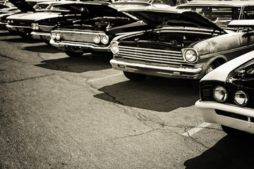 Fotomurales - Classic cars in a row