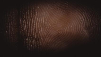 Black Fingerprint Identification