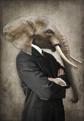Photo sur Plexiglas Animaux de Hipster Elephant in a suit. Man with the head of an elephant. Concept graphic in vintage style.