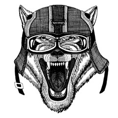Wild wolf, dog. Hipster animal wearing motorycle helmet. Image for kindergarten children clothing, kids. T-shirt, tattoo, emblem, badge, logo, patch