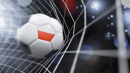 Realistic soccer ball in the net with the flag of Poland.(series)
