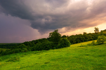 beautiful countryside on a cloudy sunset. trees on grassy hillside in evening light
