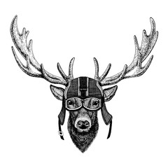 Deer Hipster animal wearing motorycle helmet. Image for kindergarten children clothing, kids. T-shirt, tattoo, emblem, badge, logo, patch