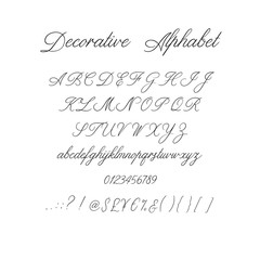 Calligraphy alphabet. Decorative handwritten brush font. Vector letters. Wedding calligraphy. ABC for your design