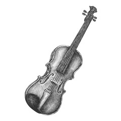 Hand drawn violin isolated on background