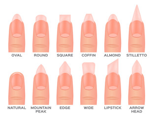 Set kinds of nails. nail shapes and type